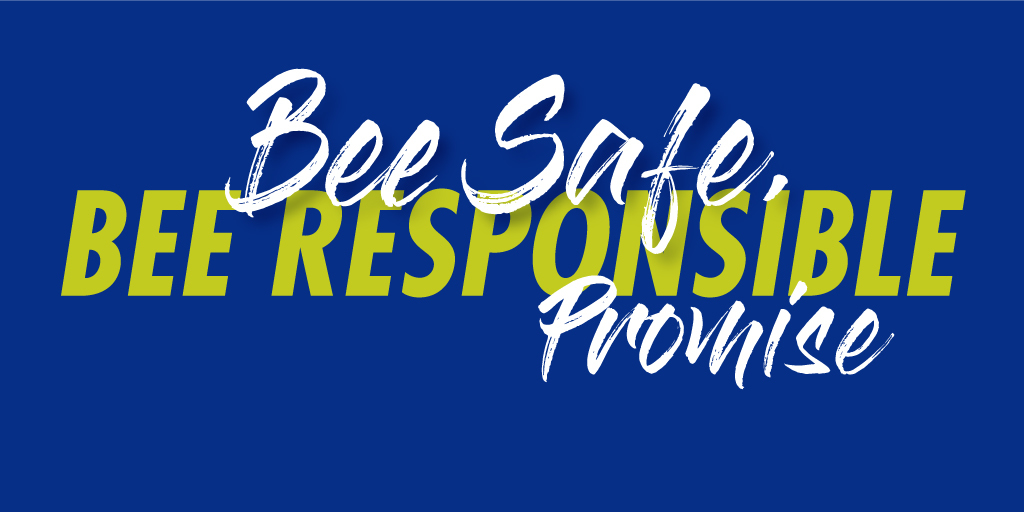 bee safe, bee responsible promise
