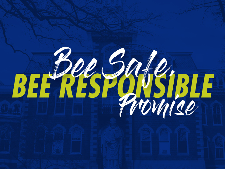 bee safe bee responsible promise